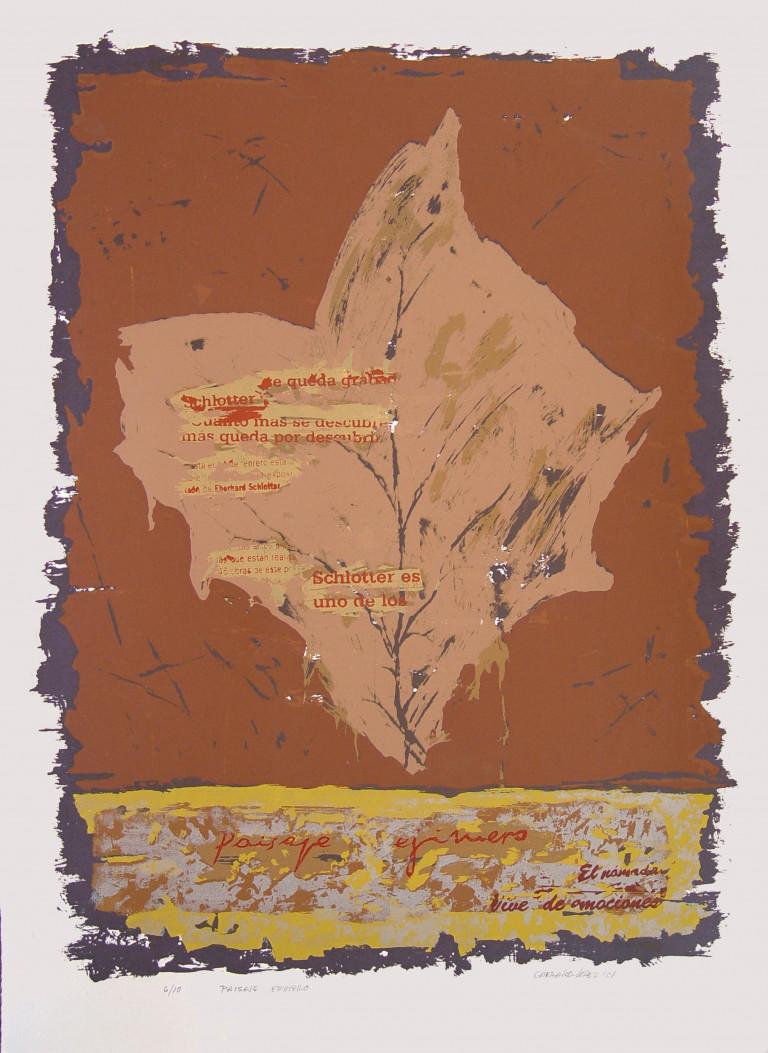 Paisaje efímero-2001 Fabriano 65x50-serigrafía